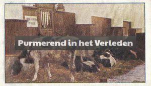 ter wee watersnood 1916 (2)